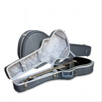 Ashton PLAT500GS Electric Shaped ABS Case