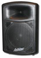 Ashton MPS15 Speaker With a powerful built-in amp and mixer