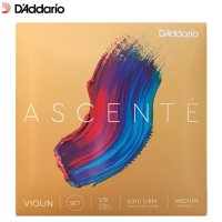 Daddario Ascente Violin Strings Set 1/8 Size Scale Medium